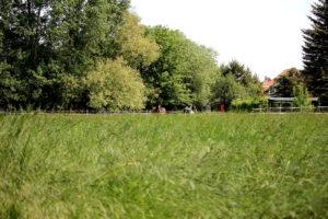 Koppel Treben Grundstein8
