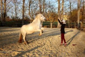 Lissy steigt beim freien Training
