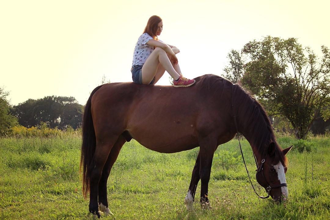 Grundstein 8 auf der Wiese mit Pferdetrainerin Manu